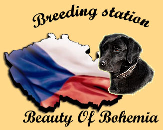 Beauty Of Bohemia